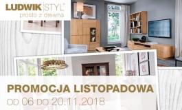 Od 06 do 20.11.2018 Promocja listopadowa w salonie LUDWIK STYL